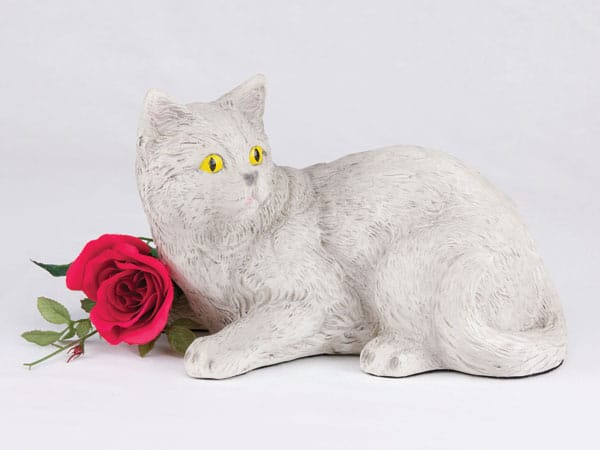 Companion Series cat cremation urn shorthair all gray