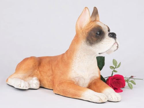 Boxer, Ears Up, Fawn & White figurine cremation urn for dog ashes