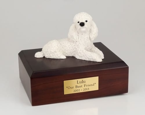 White poodle figurine urn w/wood box, laying down, standard