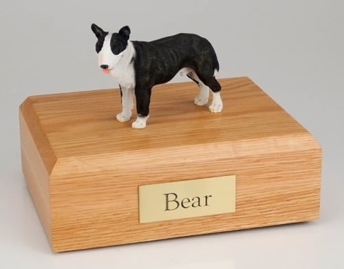 Bull Terrier brindle/white figurine cremation urn w/wood box