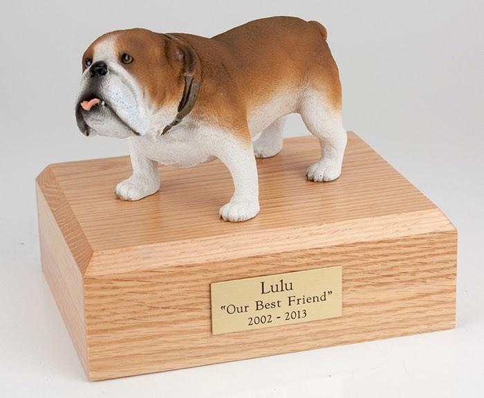 Bulldog figurine cremation urn w/wood box