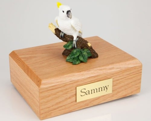 Cockatoo Parrot figurine cremation urn w/wood box