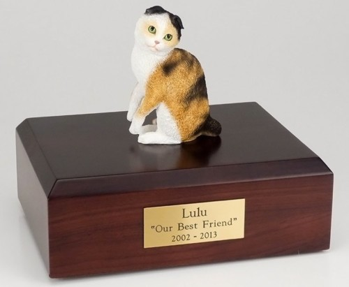 Scottish Fold cat figurine cremation urn w/wood box