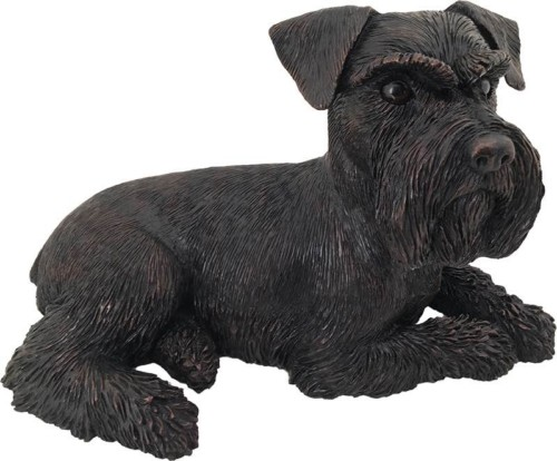 Schnauzer Ears Down dog bronze look large figurine cremation urn