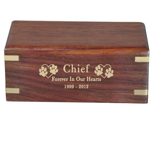 Small rosewood urn with engraved wood front, gold fill