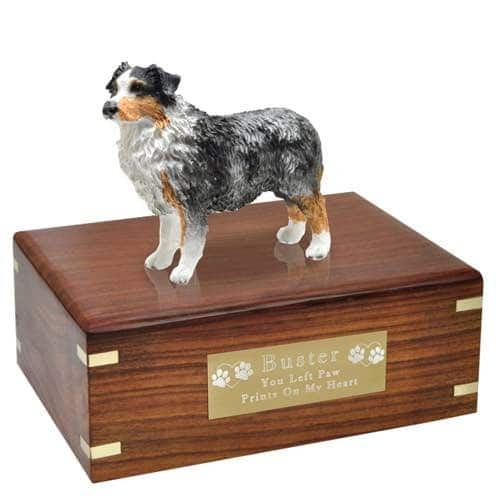 Blue Australian Shepherd Cremation Urn with engraved plaque, medium, DF99B