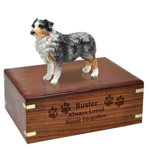 Blue Australian Shepherd Cremation Urn with wood engraving, medium, DF99B