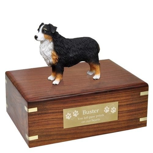 Australian Shepherd Cremation Urn with plaque, medium, DF99F