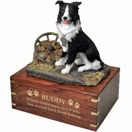 Border Collie Cremation Urn with engraved wood, gold fill