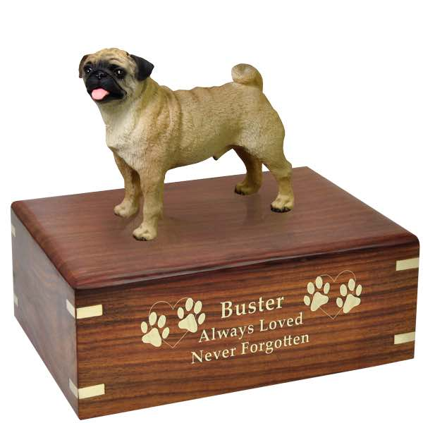 Fawn Pug Cremation Urn with engraved wood, gold fill