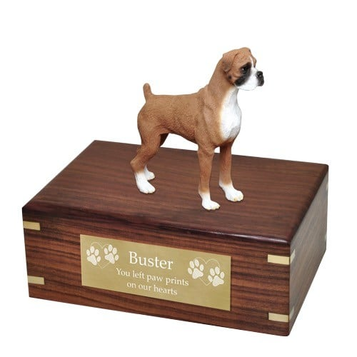 Boxer figurine cremation urn, uncropped ears, with engraved plate