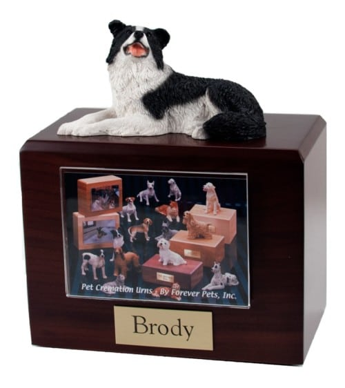 Laying Border Collie figurine photo cremation urn