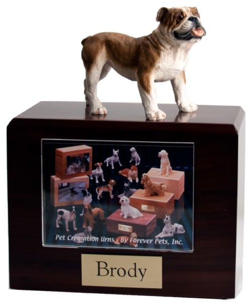 Standing bulldog figurine photo cremation urn