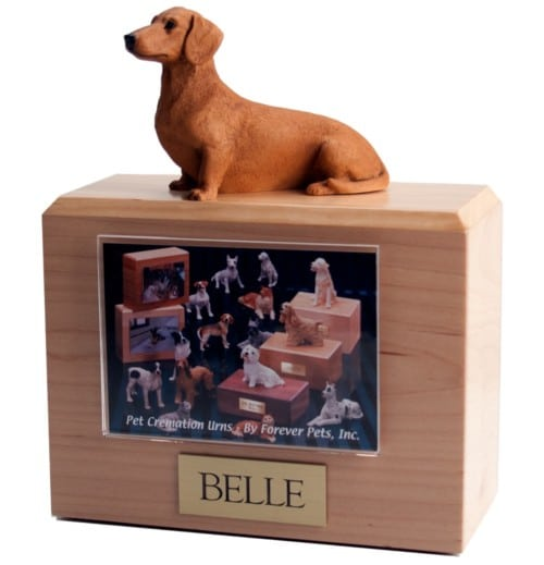 Sitting Red Dachshund figurine atop hardwood urn with photo holder