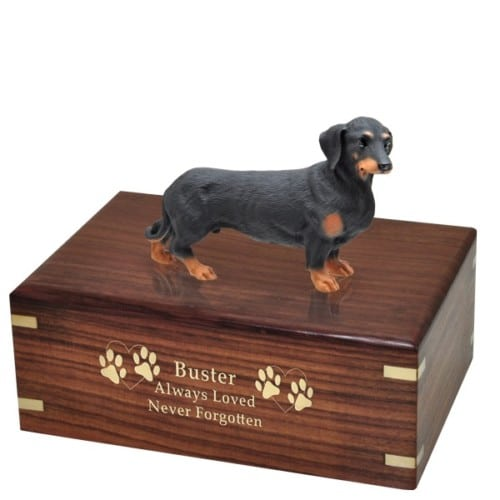 Black Dachshund dog figurine cremation urn, with engraved wood, gold fill, medium