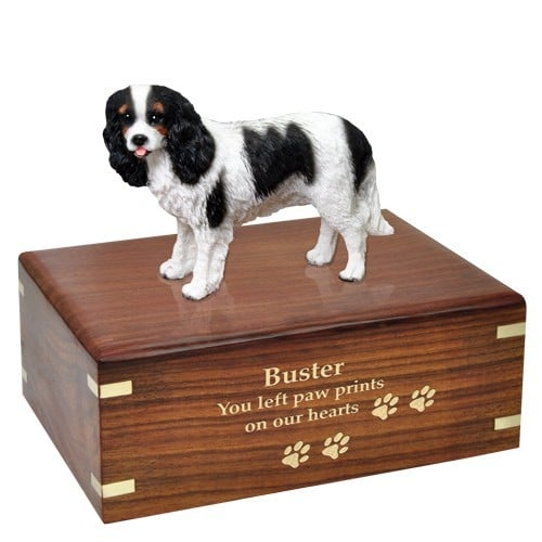 Tricolor Cavalier King Charles Spaniel dog figurine cremation urn, with engraved wood, gold fill