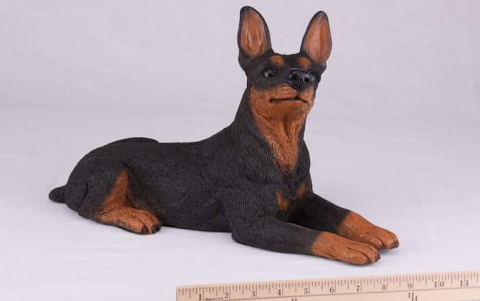 Miniature Pinscher Min Pin pet dog cremation urn figurine, with ruler