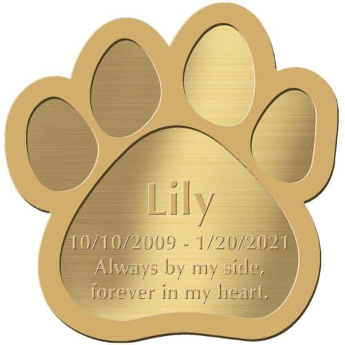 Engraved acrylic memorial urn plate, brass finish, paw print shape, block font