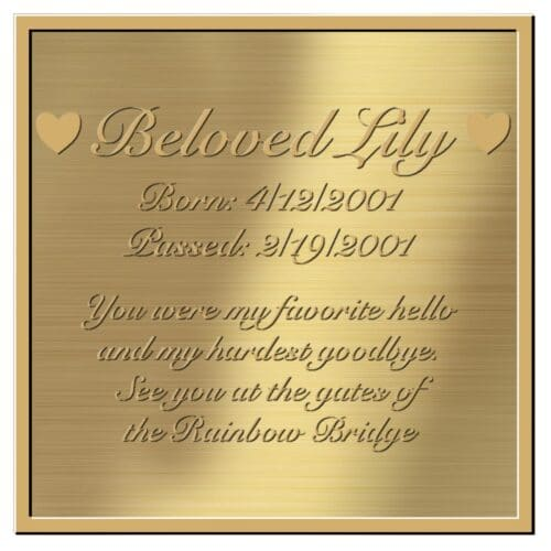 Engraved acrylic memorial urn plate, brass finish, square shape, script font